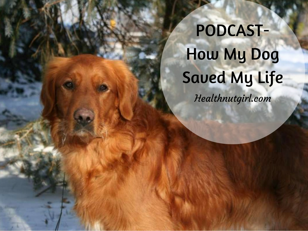 Podcast – How My Dog Saved My Life